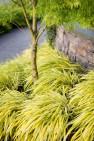 Bainbridge Island Residence – Arced Retaining Wall – Board & Vellum Landscape