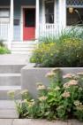Central District Edible Garden – Board & Vellum – Landscape Architecture & Site Design