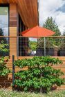 Cloverdale House – Second Story Addition by Board & Vellum